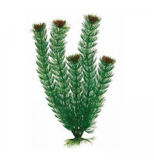 Пластиковое растение Barbus Plant 002 - Амбулия ЗЕЛЕНАЯ, 10см