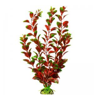Пластиковое растение Barbus Plant 006 -Людвигия КРАСНАЯ, 10см
