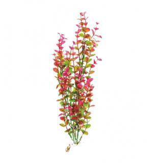Пластиковое растение Barbus Plant 025 - Бакопа КРАСНАЯ, 20см