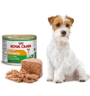 Консервы ROYAL CANIN ADULT BEAUTY MOUSSE для взрослых собак с 10 месяцев (0,195 кг)
