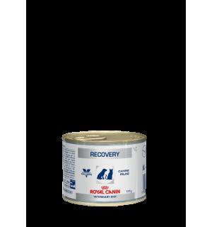 Консервы ROYAL CANIN RECOVERY FEL/CAN влажная диета для кошек и собак (0,195 кг)
