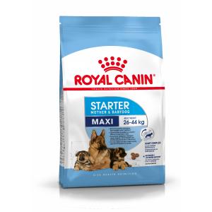 Сухой корм ROYAL CANIN Maxi Starter для щенков собак крупных пород (4 кг)